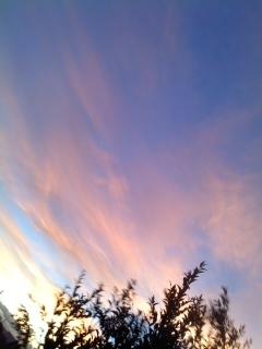 【写真:空】.jpg
