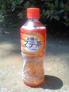 マテ茶.jpg